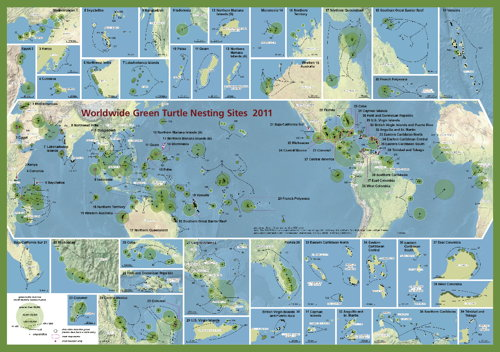SWOT: Worldwide Green Turtle Nesting Sites 2011 (thumbnail)